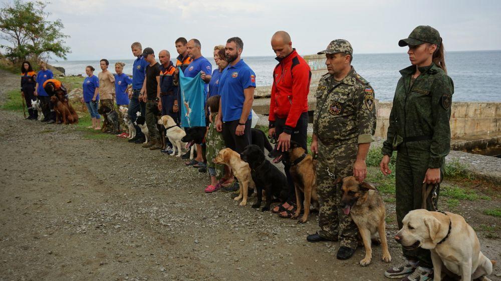 В Крыму стартовали учебно-тренировочные сборы кинологических расчетов по проведению поисково-спасательных работ