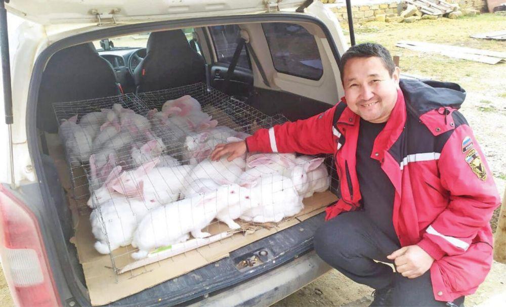 Евпаториец открыл ферму и хочет вывести новую породу коров