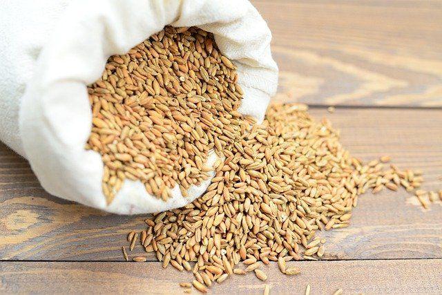 Вор вынес 100 килограммов зерна из амбара в Красногвардейском районе