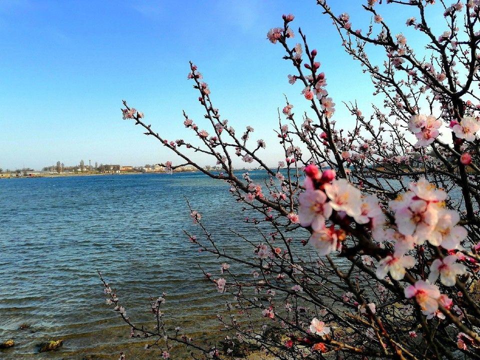 Погода в Крыму на 15 апреля: дождь и тепло до +13