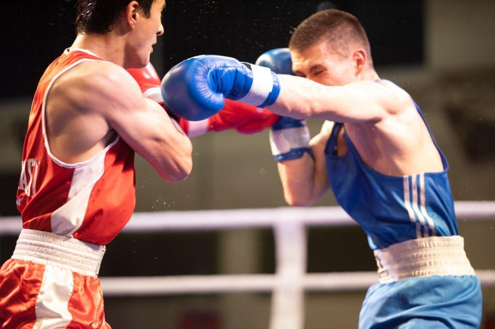 Крым и Севастополь дадут бой Москве на ринге