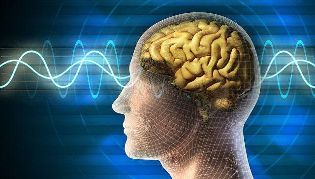 """Как лучше """"тренировать"""" память – советы невролога"""