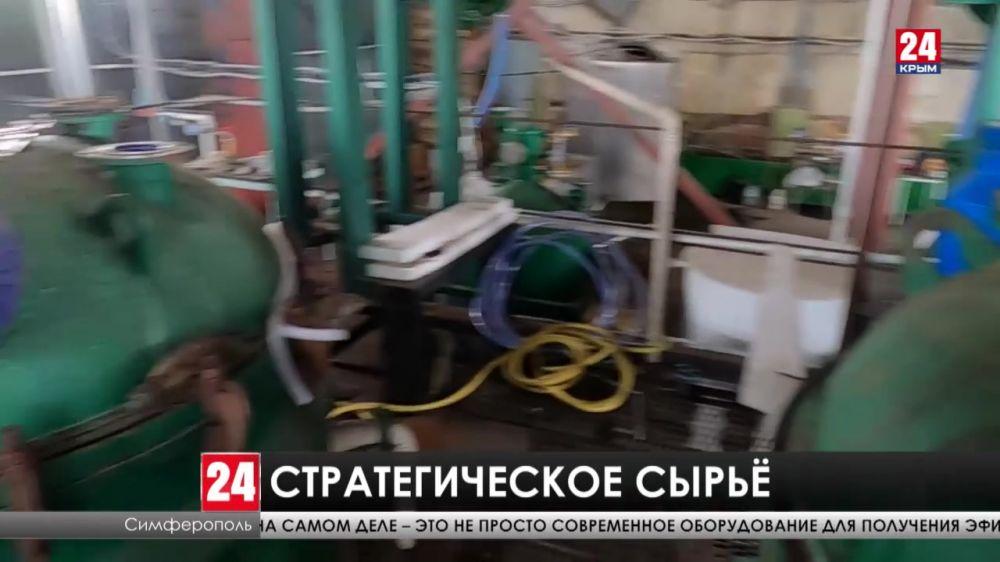 В Крыму начали решать проблему переработки и выращивания эфиромасличных культур