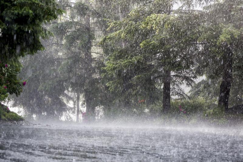 Южный циклон несет в Крым сильный ветер и дожди