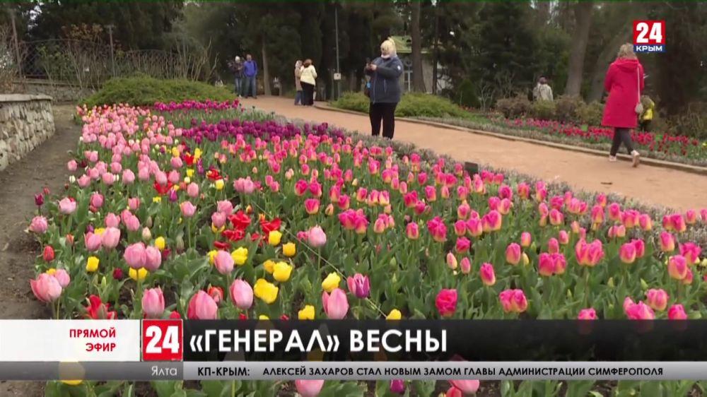 Пора цветения. В Никитском Ботаническом саду открыли 14-ый парад тюльпанов. Какие новые сорта представили на выставке?