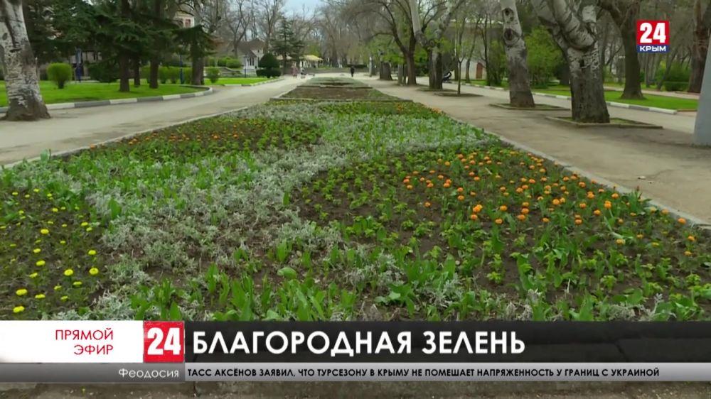 Весна на восточном побережье. Как озеленяют улицы Феодосии?