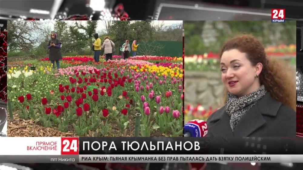 В Никитском ботаническом саду расцвели тюльпаны
