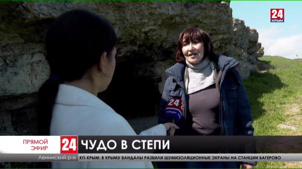 Крымское чудо. На заповедном Опуке зацвели краснокнижные тюльпаны