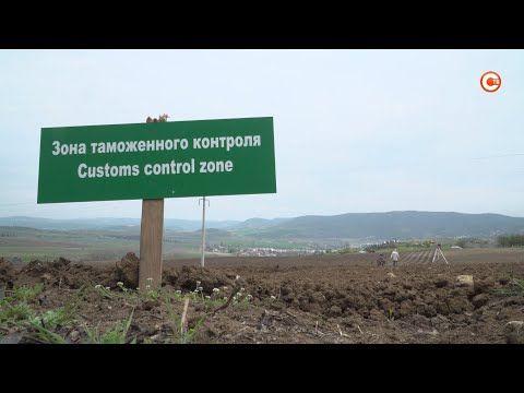 Двести гектаров новых виноградников могут появиться в Севастополе (СЮЖЕТ)