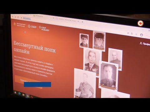 Почти 200 заявок подано в Севастополе на участие в Бессмертном полку (СЮЖЕТ)