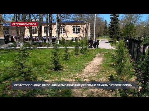 В севастопольских школах высаживают деревья в память о героях Великой Отечественной