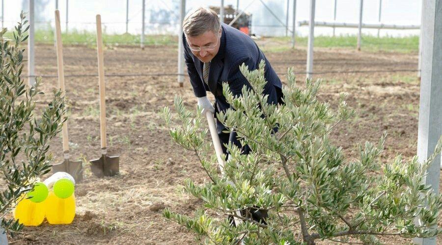 Инновационную сельскохозяйственную долину КФУ запустили в Крыму