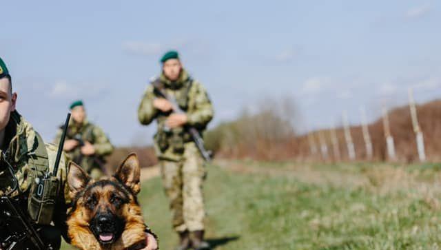 Украинские пограничники не пустили в Крым партию запрещенных лекарств