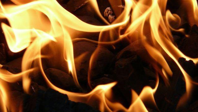 Как спасали животных с горящего зоорынка в Краснодаре - видео