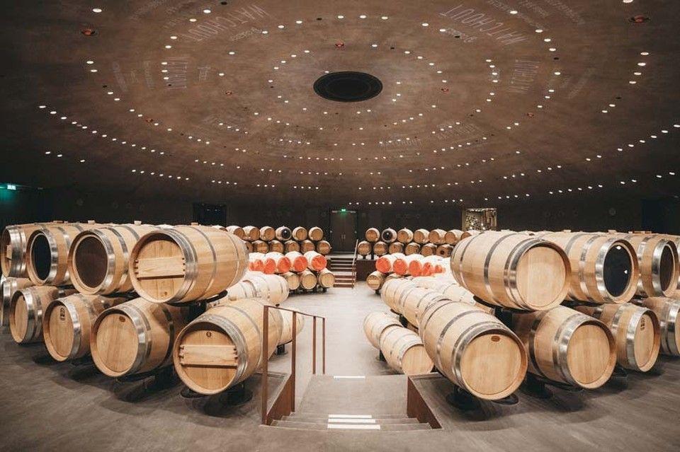 Первый парк российского виноделия откроется на Южном берегу Крыма