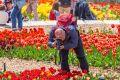 В Крыму выбрали победителя Парада тюльпанов 2021: Генералом стал «Fabio»