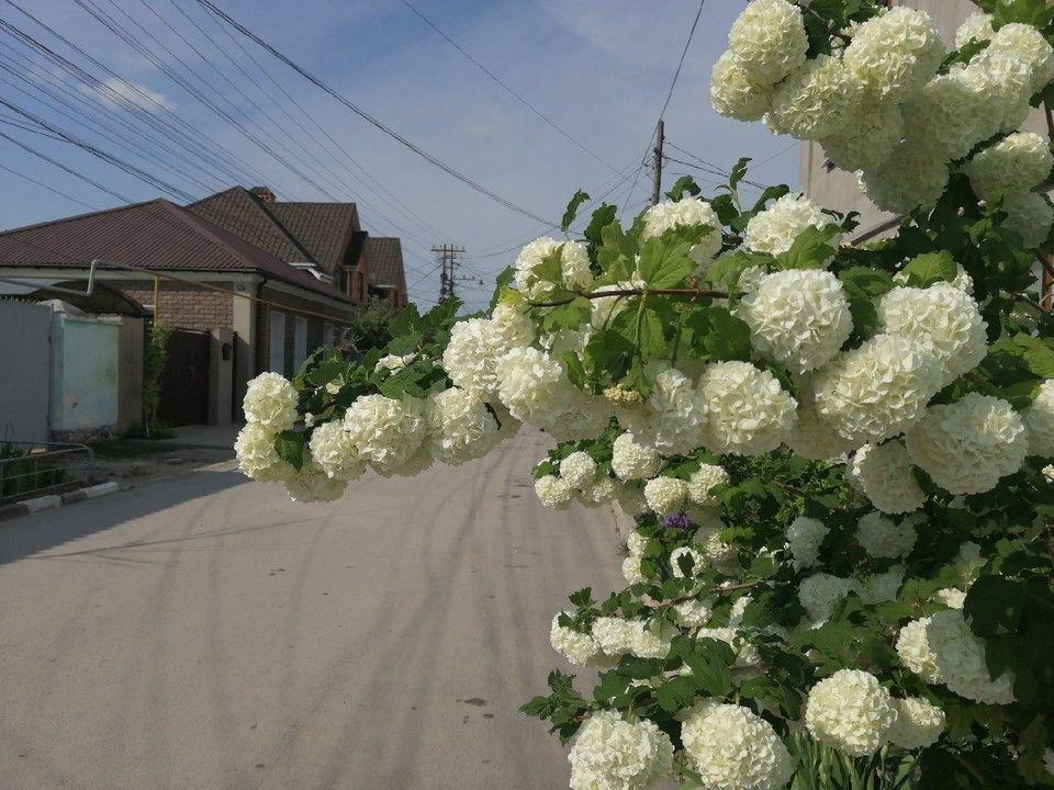 Погода в Крыму на 17 мая: юго-западный ветер и тепло до +22°