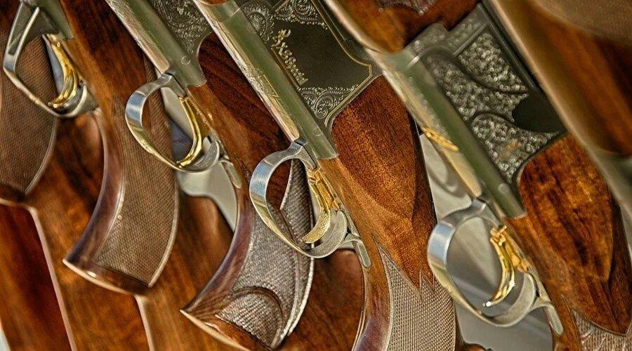 Законопроект об усилении контроля над оборотом оружия оценили в Кремле