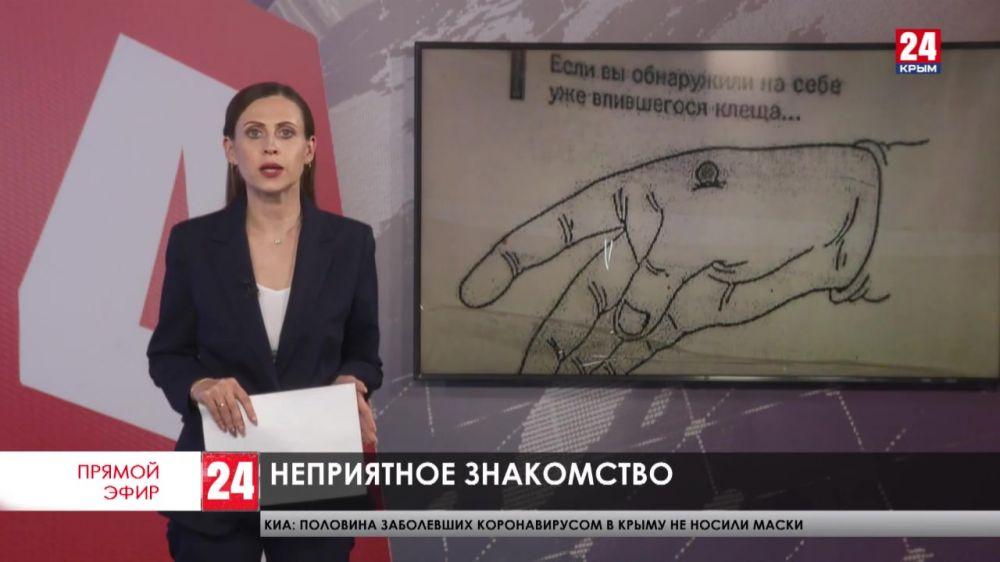 Десятки обращений к медикам – на севере Крыма активизировались змеи и клещи. Стоит ли опасаться?