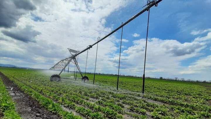 Андрей Рюмшин: Валовое производство продукции АПК в республике может вырасти до 20% благодаря устойчивому водоснабжению полуострова