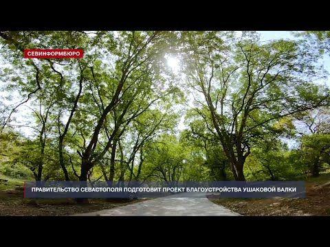 Власти Севастополя запретили строительство в Ушаковой балке