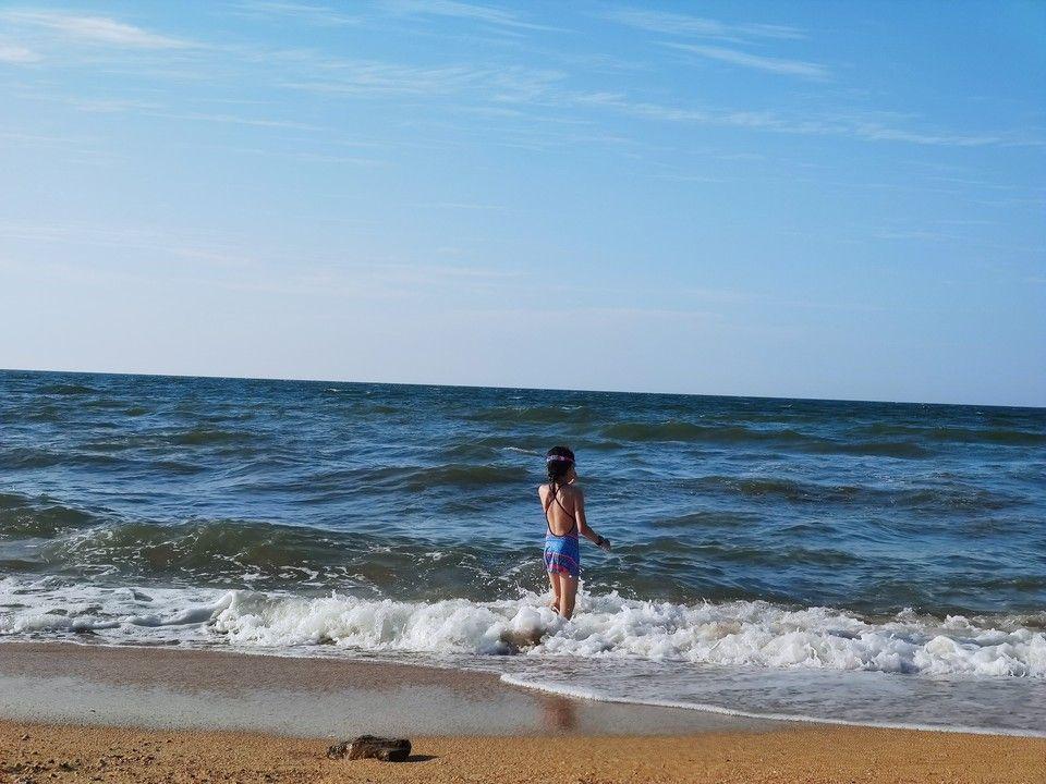 Аксенов рассказал о качестве воды в Азовском море