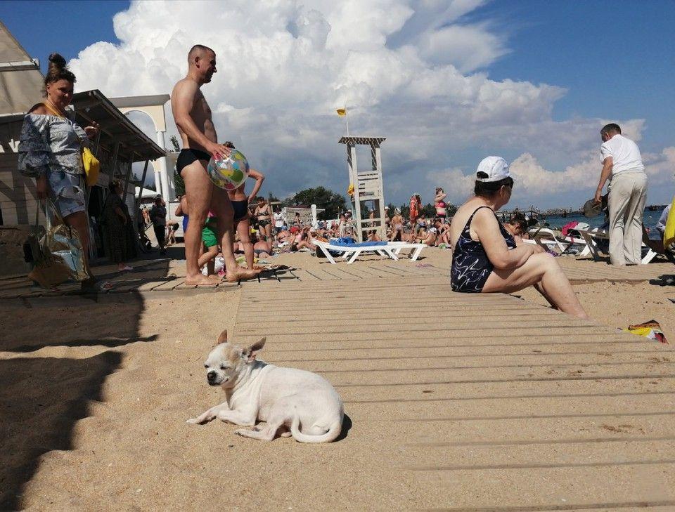 Погода в Крыму на 13 июня: без осадков и тепло до +27