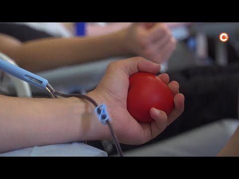 В Севастополе проходит посвященная Всемирному дню донорства неделя (СЮЖЕТ)