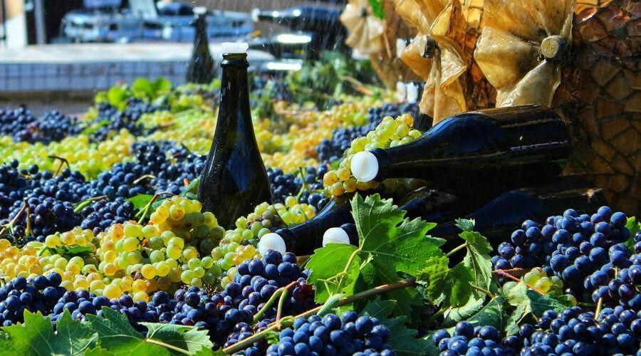Кения хочет покупать у Крыма пищевую продукцию и вино