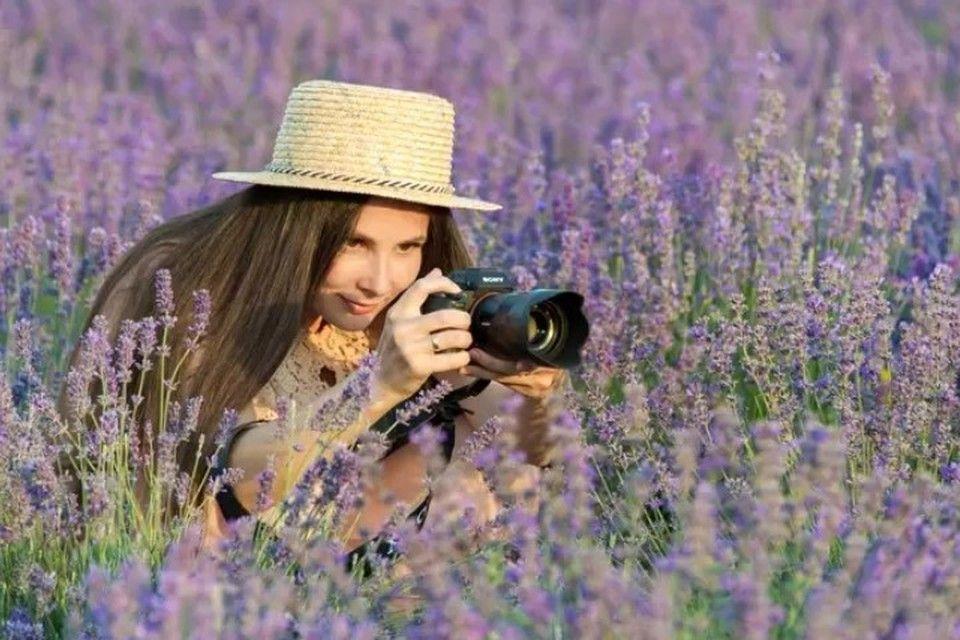 Лавандовые поля: Где в Крыму сделать самые красивые фотографии