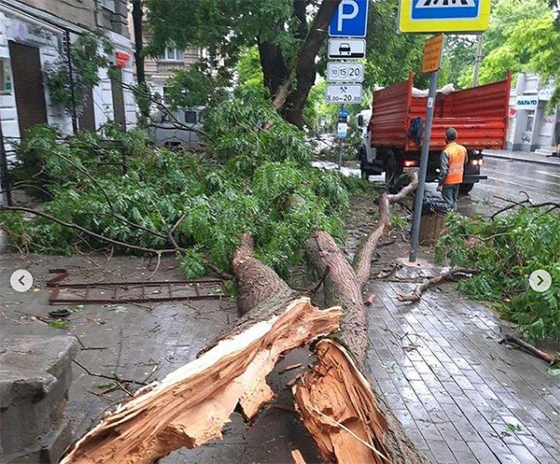 Как горхоз Севастополя со стихией боролся