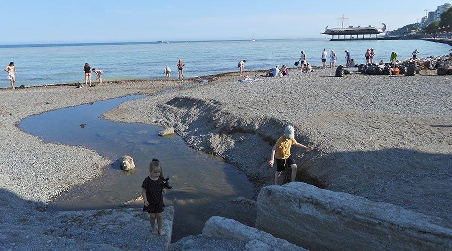 Угроза заразиться холерой не отпугивает желающих поплавать в ялтинском море