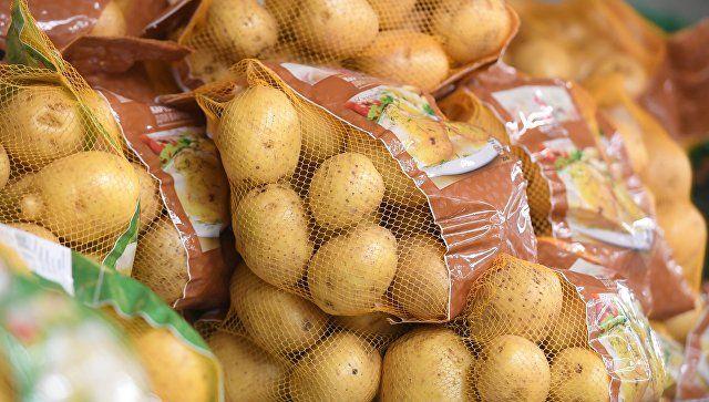 Ученые рассказали о пользе вареной картошки в борьбе с гипертонией