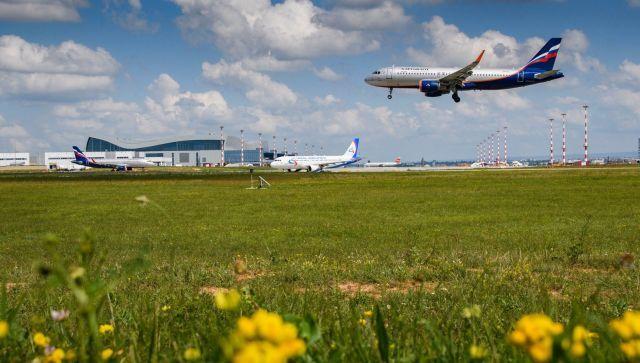 Новый рекорд: в июне аэропорт Симферополь обслужил свыше 260 рейсов