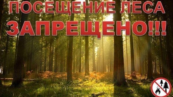 Внимание!!! Ограничено пребывание граждан в лесах
