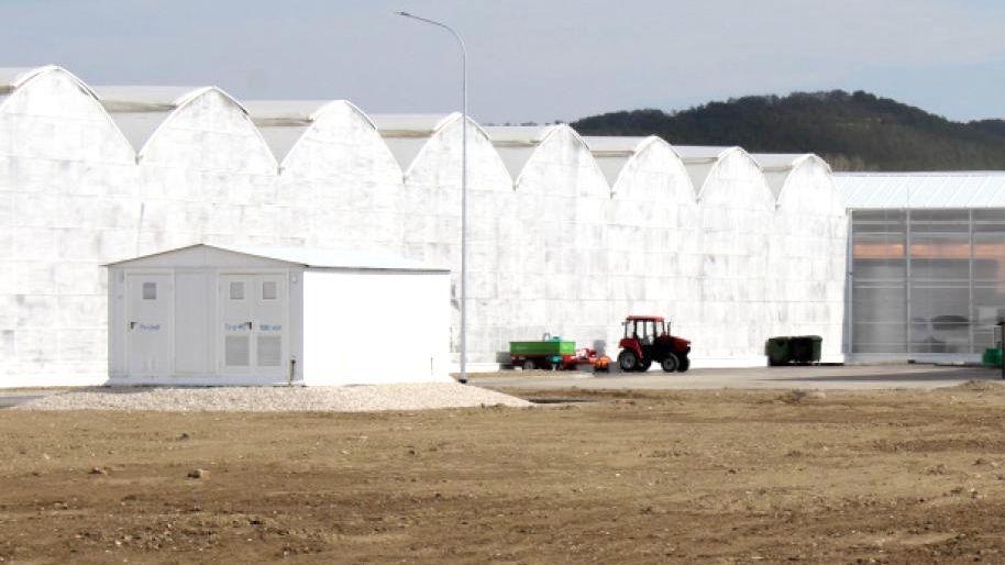 Специалисты Белогорского отдела Госкомрегистра оформили 15 объектов недвижимости в собственность крупнейшего в Крыму предприятия по производству тепличных томатов