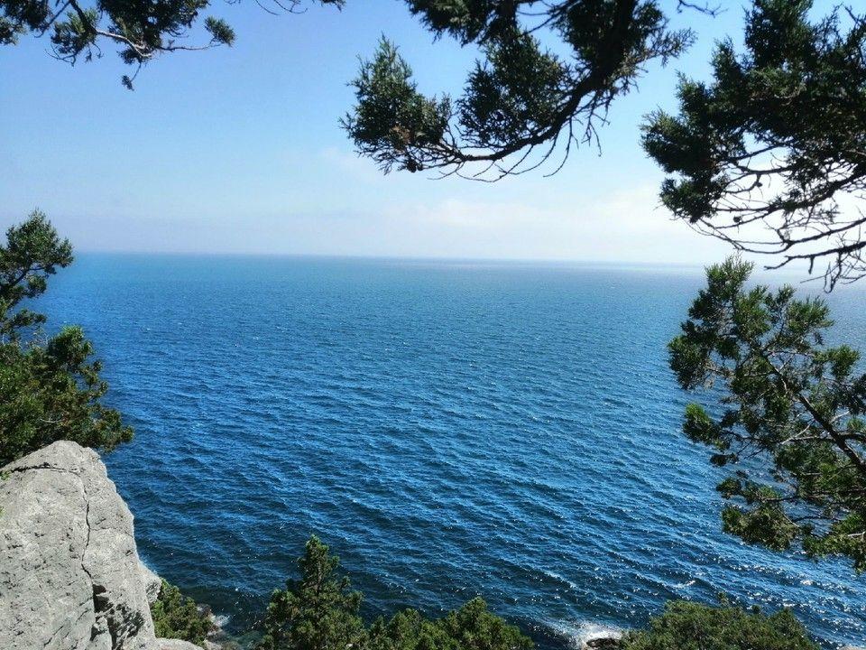 Европарламент наказал французского политика за визит в Крым