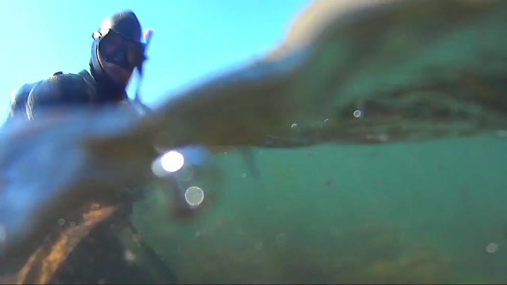 Водолазы ГКУ РК «КРЫМ-СПАС» находятся в полной готовности к осуществлению работ по очистке пляжей МО ГО Ялта