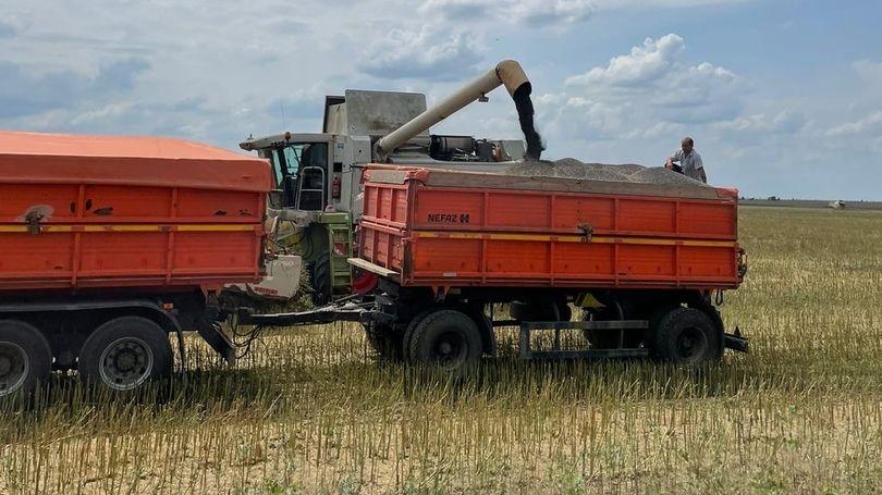 Антон Кравец посетил сельхозпредприятие в с.Михайловка