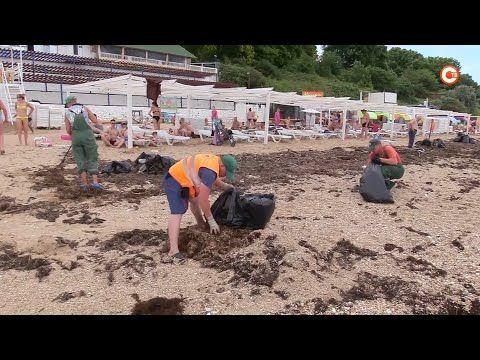 Севастопольские пляжи очищают от последствий стихии (СЮЖЕТ)
