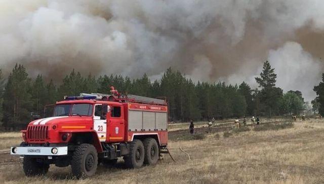 18 человек пострадали от лесных пожаров в Челябинской области