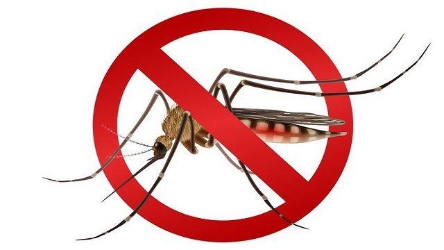 На объектах водохозяйственно-мелиоративного комплекса Республики Крым проводятся работы по уничтожению личинки и летающего комара