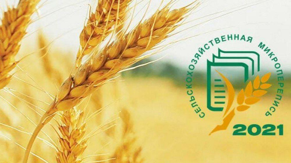 В Крыму с 1 по 30 августа пройдет сельскохозяйственная микроперепись 2021 года