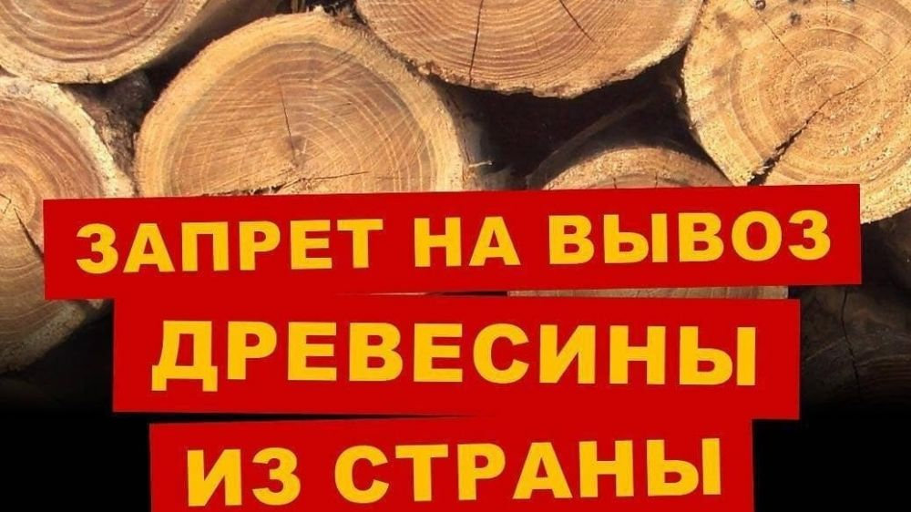 Минприроды Крыма информирует о запрете на экспорт древесины хвойных и ценных лиственных пород