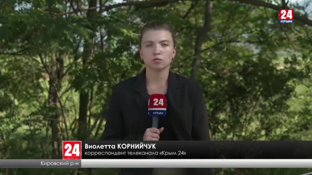 Крымским производителям вина начали выплачивать безвозмездные субсидии. Какой объём финансирования?