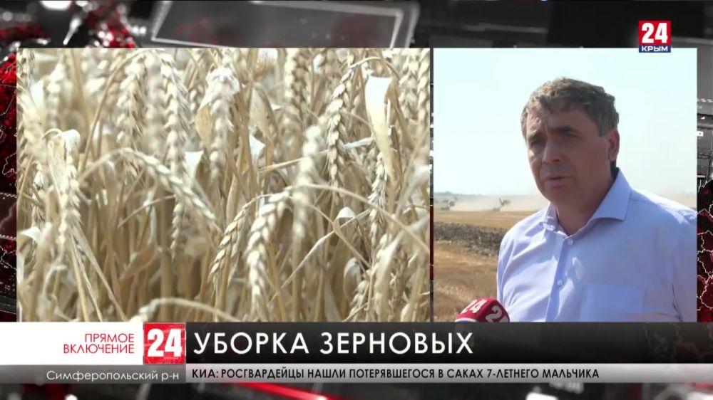 Крымские аграрии обмолотили 60% зерновых и бобовых культур