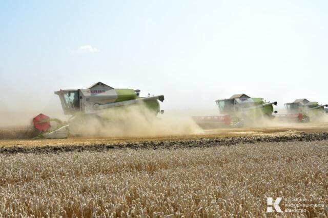 Крымские аграрии собрали 824 тысячи тонны зерновых и зернобобовых культур