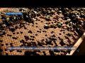 Как делают мёд в Красногвардейском районе Крыма