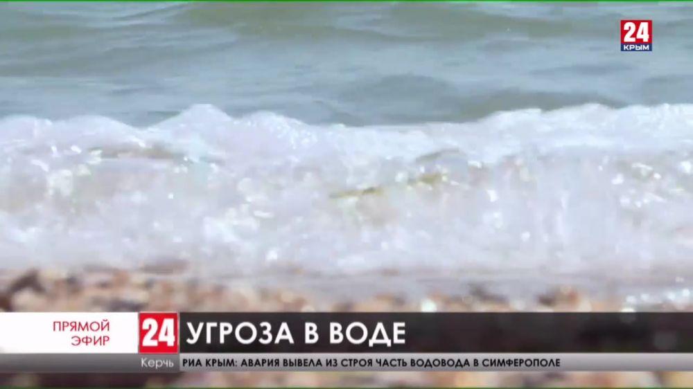 Незваные гости. Как защитить себя от ожога медузы в море?