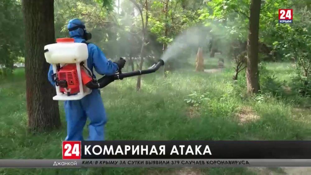 Комары атакуют. Как спасаются от назойливых насекомых на севере Крыма?